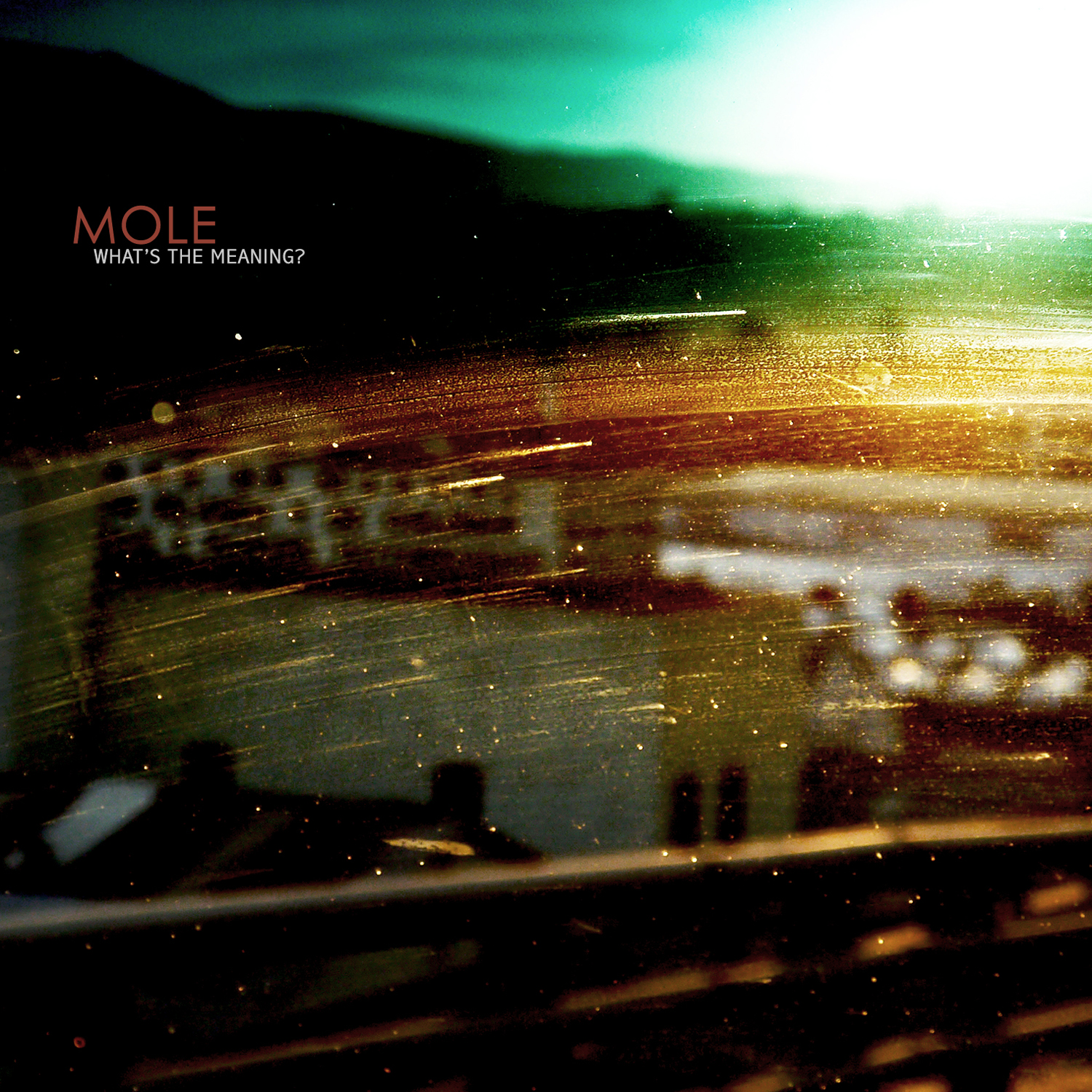 MOLE - JAZZWISE feature and other press 1