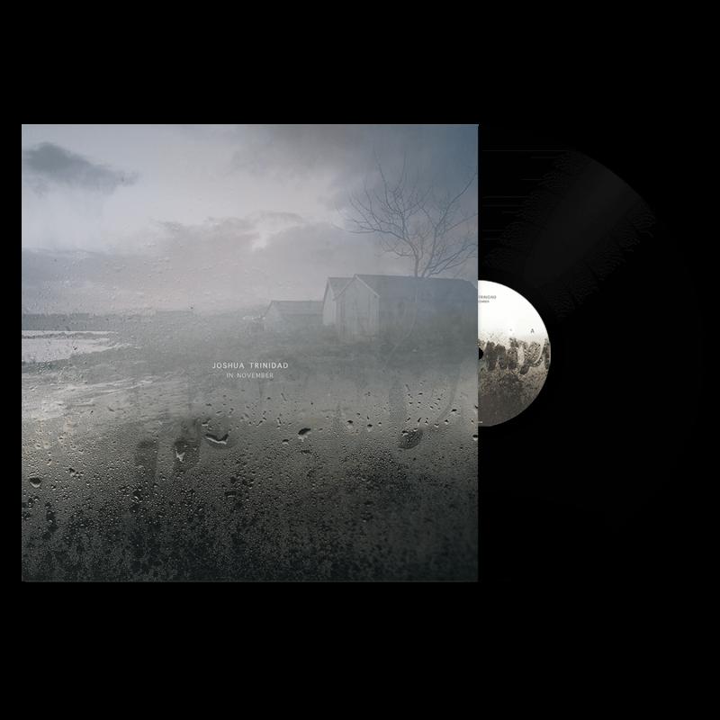 In November - Vinyl 5
