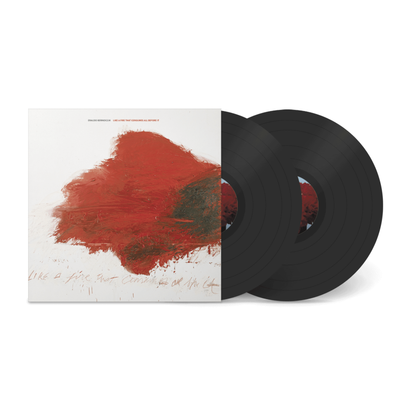 Like A Fire That Consumes All Before It - Vinyl 5